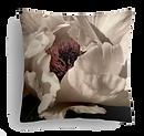 white rose trans.png