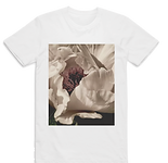 white rose trans tee.png