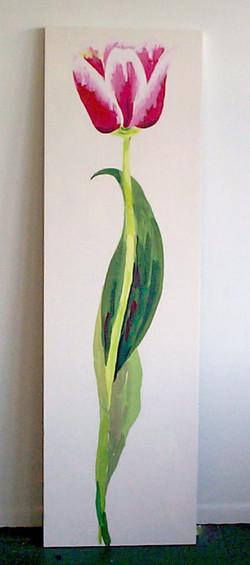 Red Tulip    2006