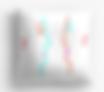 Screen Shot 2020-06-01 at 7.02.04 PM.png