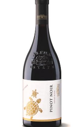Pinot Noir rood
