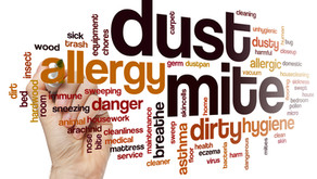 Reducing allergens & toxins in your bedroom