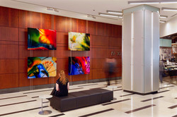 Permanent Installation, 444 N Mich Ave,