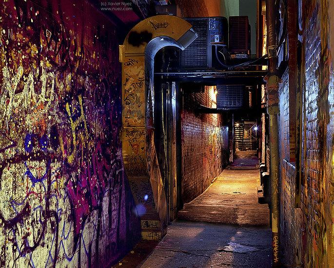 Alleys & Ruins no. 130, Bubble Gum (2009, Ann Arbor, MI, 10pm)