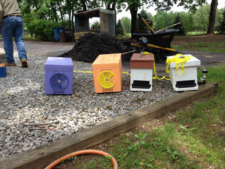 New Hives