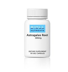 Astragalus Root.jpg