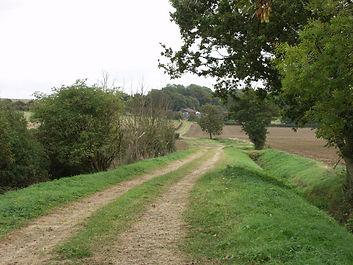 Farm track, Wilstead (L).jpg