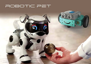 Robotics Coding Robotic Pet Course Main