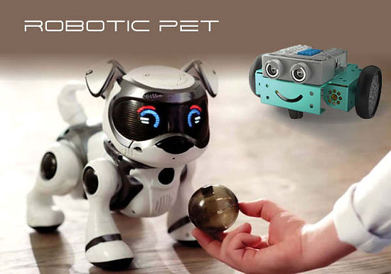 FRAAU0000023 - Introduction to Robotic Pet