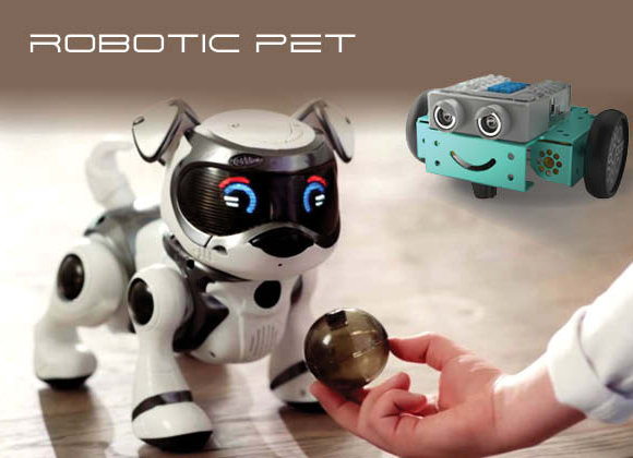 FRAAU0000035 - Introduction to Robotic Pet
