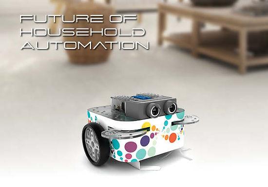 FRAAU0000042 - Future of Household Automation