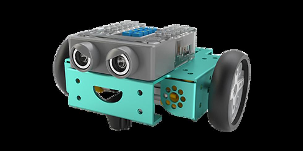 FlipRobot Smart City Autonomous Driving Robots