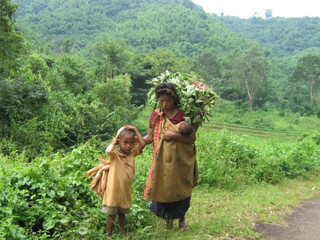 """COVID19 Pandemic and Livelihood Strategies"" – Practices of Karbi Women"