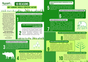 10 Reasons Why Humans Should Conserve Nature