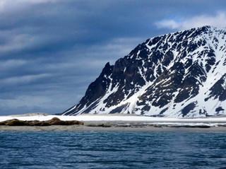 Living on the Edge: Biodiversity of the Polar Regions