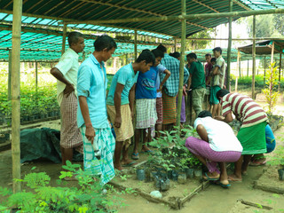 Conservation Livelihood:A Concept of Integrating Nature Conservation and Livelihood
