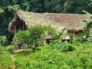 Call for a special developmental agenda for the forest fringe villages of Assam