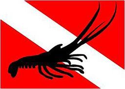 lobster Dive Flag png.jpg