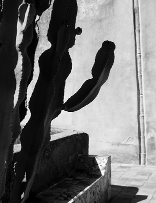 Pantelleria_PH_ANNINA_FERRARA