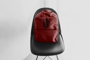WD Leather Backpack