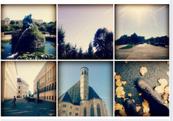 Collage of Vienna Adventure.
