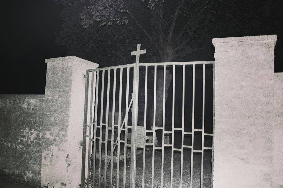 Cemetery Nights