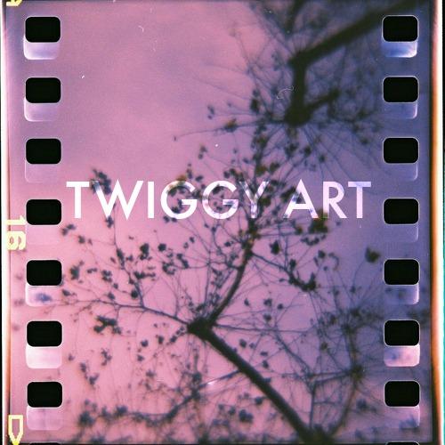 Twiggy Art Film Design