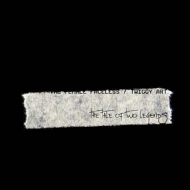 Twiggy Art (25).png