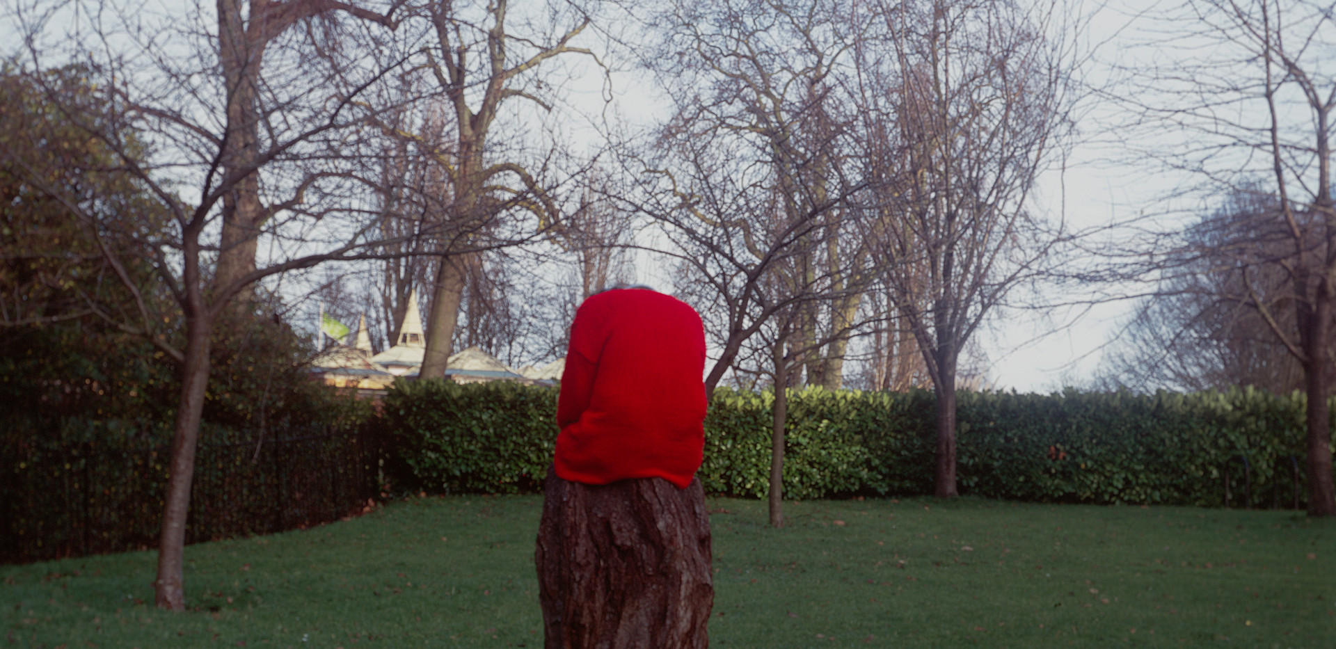 tree and red jumper.jpg