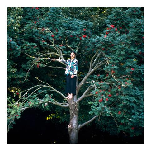 Exercise to climb a tree II
