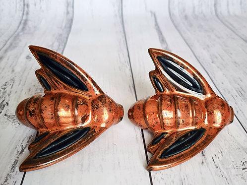 Twin Copper Moths