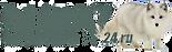 Surv24_logo_prozr2.png