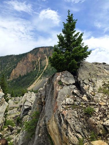 Precarious Nature
