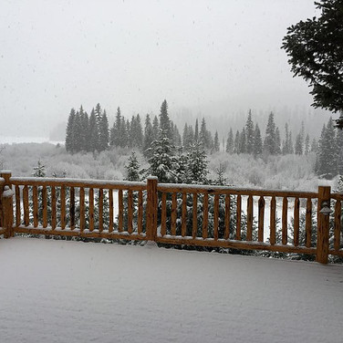 View Off the Back Porch