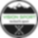 logo vision sport