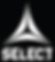 logo select marque de hand ball