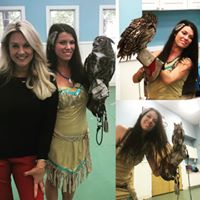 Birds of Prey Show