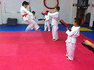 Clases Karatedo Doshinkan Pachuca