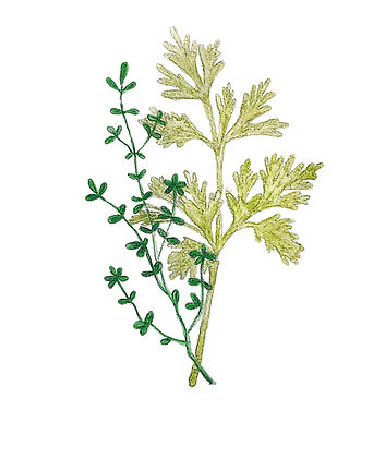 herbs_edited.png