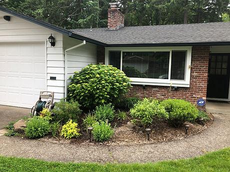 Landscape Consult, Cedar Hills, Entry Garden, Choisya, Nandina, Carex