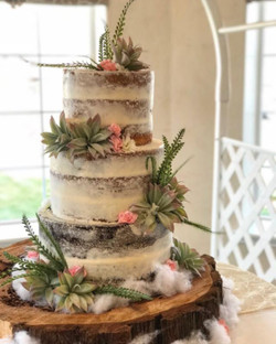 Rustic Succulent Naked Cake