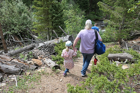 Woman and child holding hands while hiking down wooden steps in a forest.