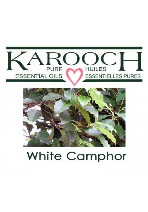 Camphor White 10ml