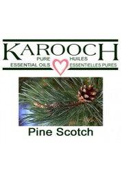 Pine Scotch 10ml