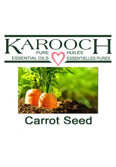 Carrot Seed 10ml