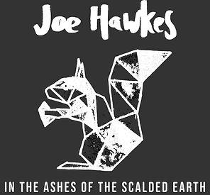 Joe Hawkes