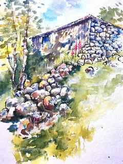 Sheep shed