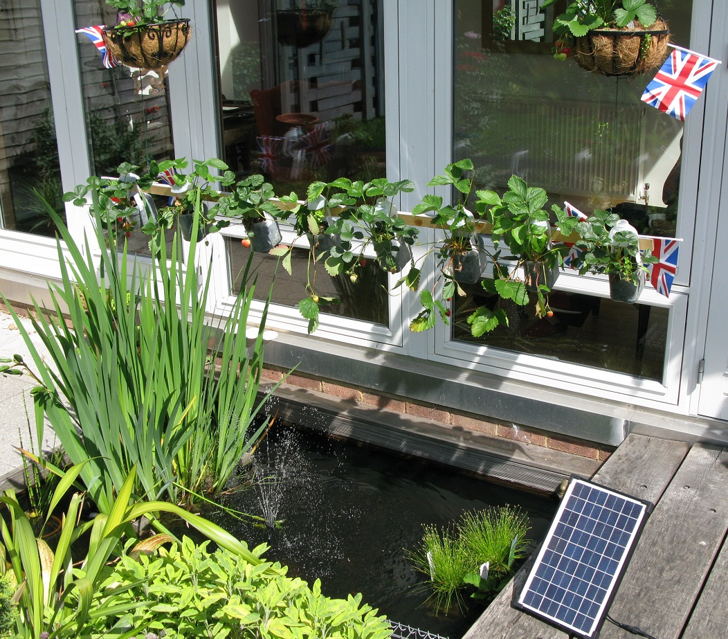 Harvest rainwater in butt and overflow to pond | Eco Design