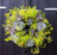 Succulent Wreath 'Lime'