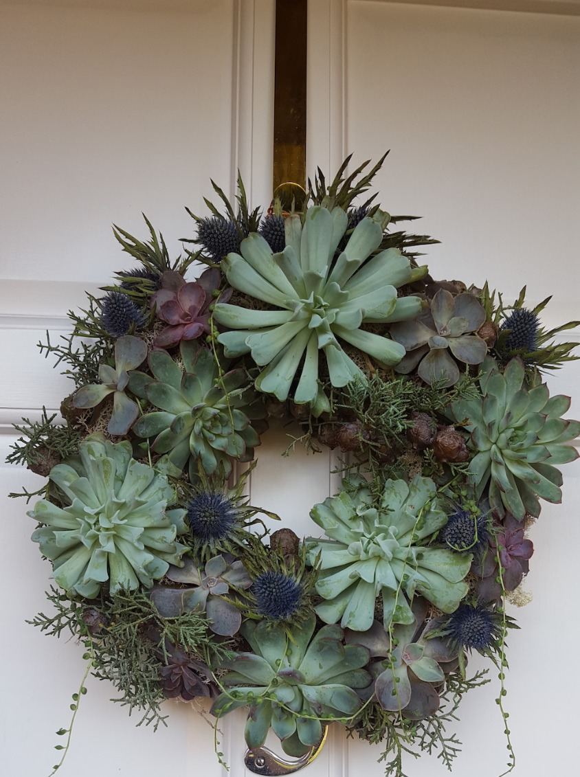 Christmas Living Wreath
